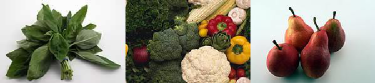 Nutrition Healthiest Foods